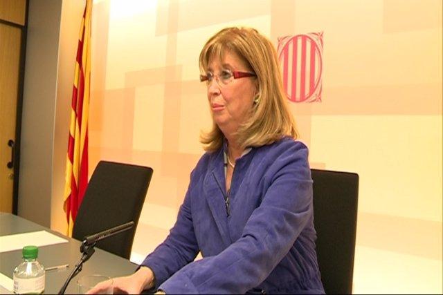"""Rigau califica la Lomce de """"herida enorme"""""""