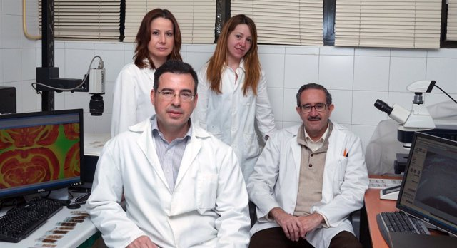 Grupo de Investigación lesiones cerebrales Universidad de Oviedo