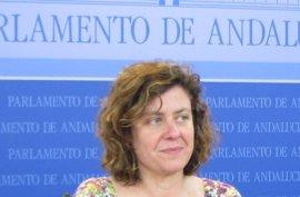 IULV-CA marca distancias con el acuerdo PP-PSOE para el relevo de Chamizo