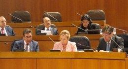 Los consejeros Oliván, Serrat y Aliaga, en el pleno