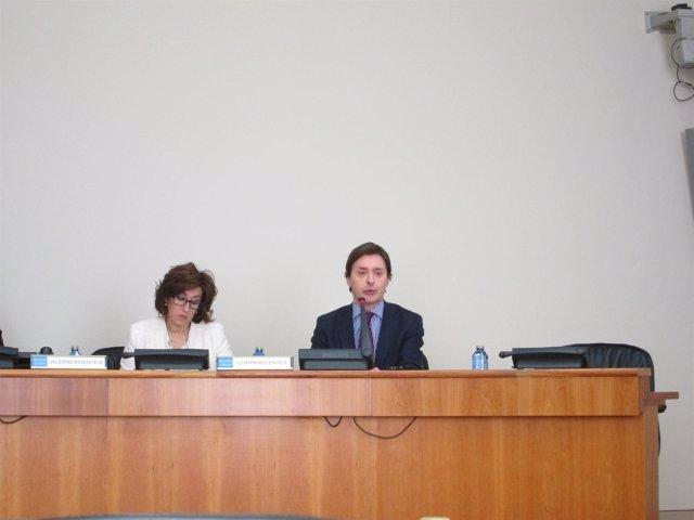 El director xeral de Relacións Exteriores e coa UE, Jesús Gamallo, en la Cámara