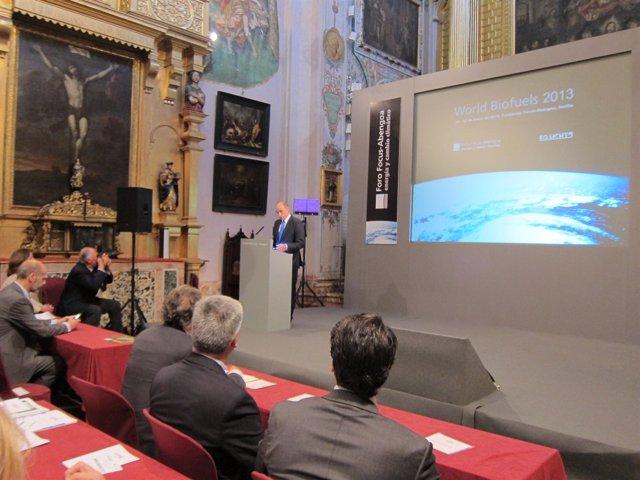 Manuel Sánchez Ortega clausurando la conferencia World Biofuels 2013