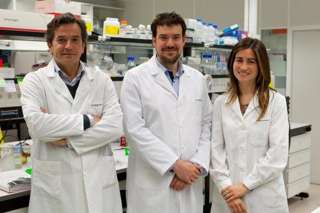 Los investigadores de CIMA responsables del proyecto