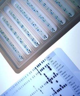 Biomarcadores en cáncer