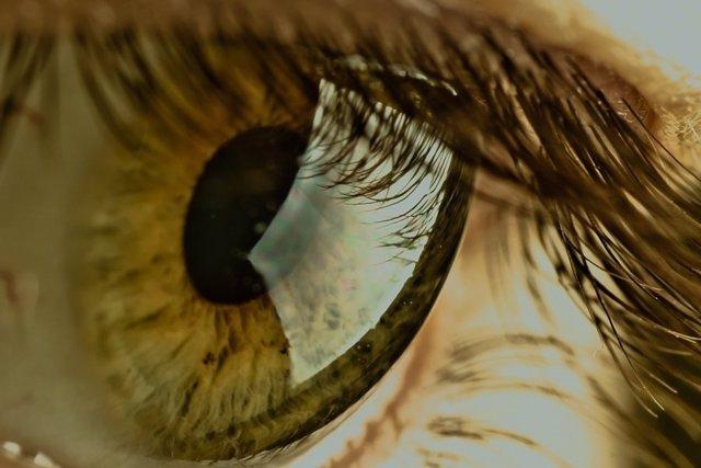 878b7f90915c8 Más de 15.000 sevillanos están en riesgo de sufrir lesiones oculares por  adquirir lentillas en Internet