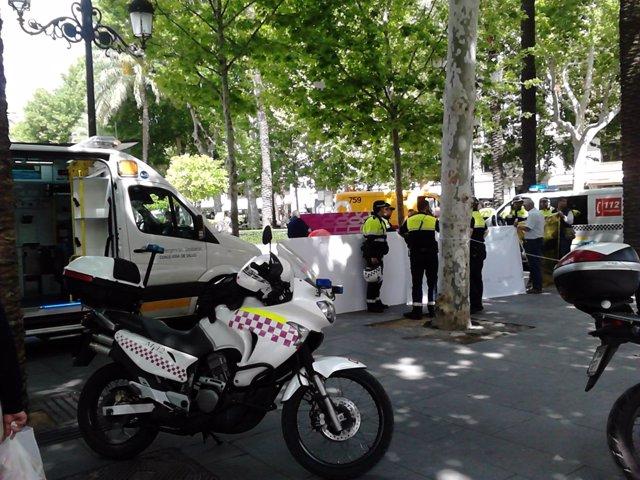 Operativo en la Plaza Nueva.