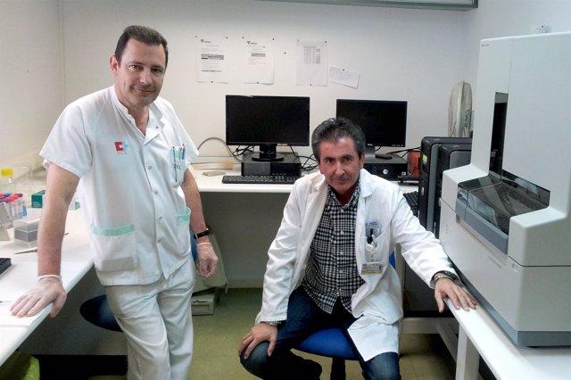 Gonzalo Ocejo y Fernando Ausín