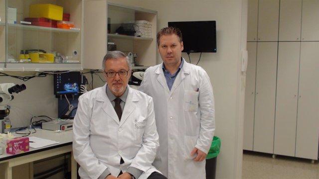 Los investigadores del CHUS José Castillo y Tomás Sobrino.