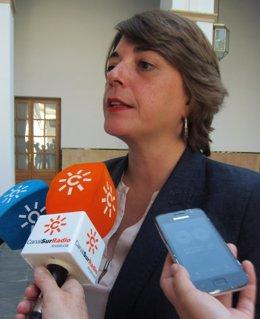 La consejera de Fomento y Vivienda, Elena Cortés, hoy en el Parlamento