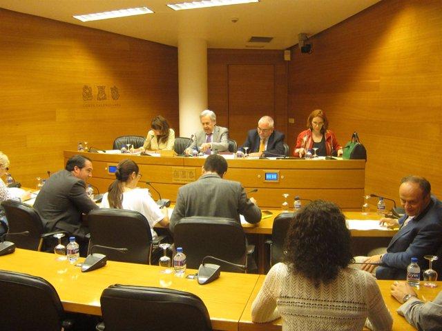 Comisión de Coordinación, Organización y Régimen de las Instituciones