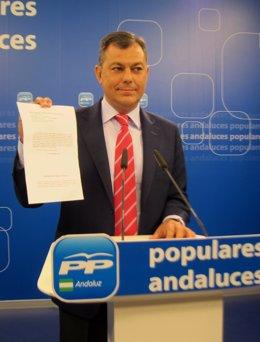 El secretrario general del PP-A, José Luis Sanz, hoy en rueda de prensa