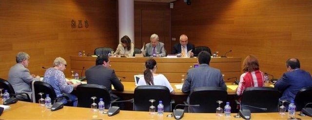 Coordinación, Organización y Régimen de las Instituciones de la Generalitat