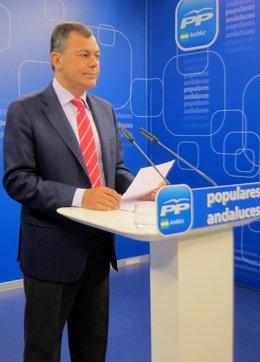 El secretario general del PP-A, José Luis Sanz, hoy en rueda de prensa