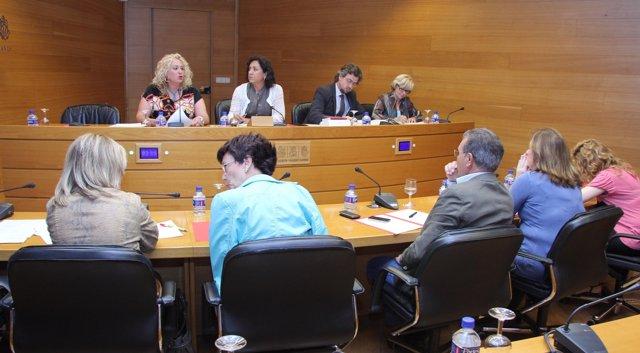 La presidenta de la Confederación Gonzalo Anaya en una comisión de las Corts