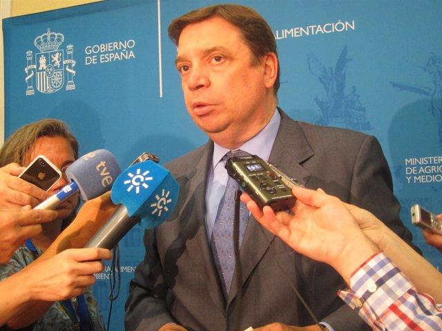 El consejero de Agricultura, Luis Planas, tras el Consejo Consultivo