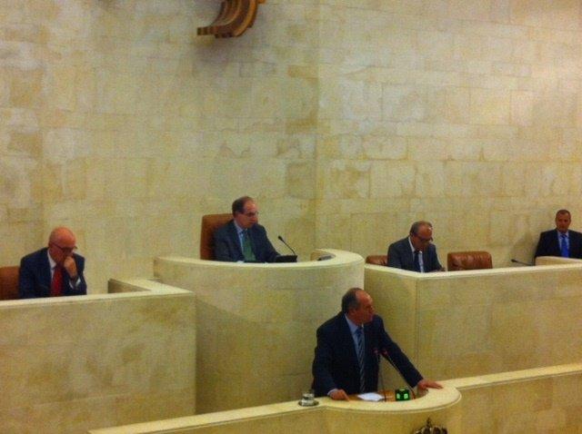 Javier Fernández en el Pleno