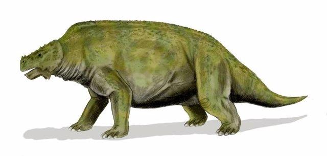 Pareiasaurs
