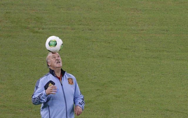 Vicente del Bosque en la Copa Confederaciones