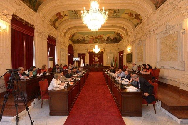 Pleno del ayto de Málaga