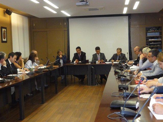 Reunión del Consejo Navarro de Bienestar Social