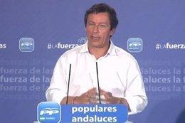 El vicesecretario general de Organización y Electoral del Partido Popular, Carlo