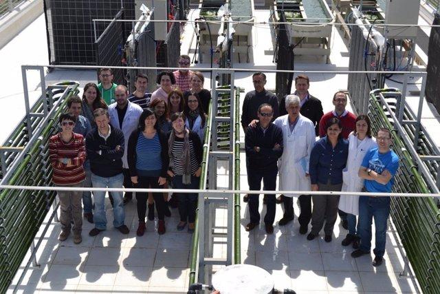 Grupo de investigación de microalgas de la UAL