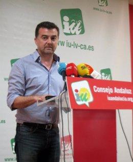 El coordinador regional de IULV-CA, Antonio Maíllo, hoy en rueda de prensa