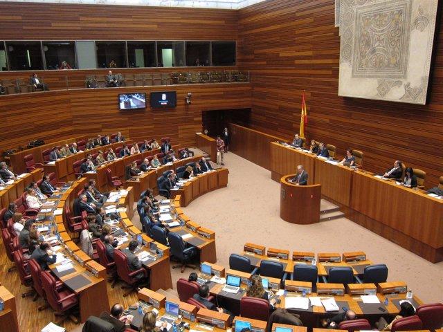 Pleno De Las Cortes De Cyl