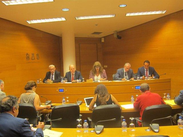 Máximo Buch en la comisión de Economía de las Corts