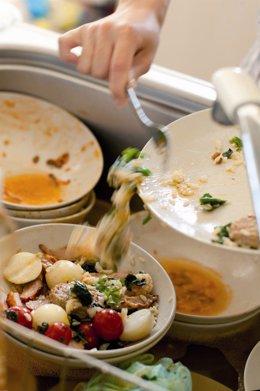 Despilfarro, desechos, comida