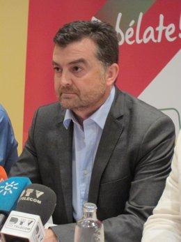 Antonio Maillo (IULV-CA)