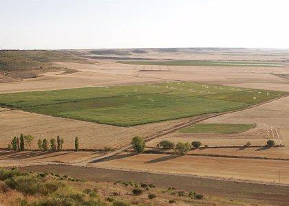 Argentina.- Los extranjeros podrán seguir comprando tierras rurales en Argentina