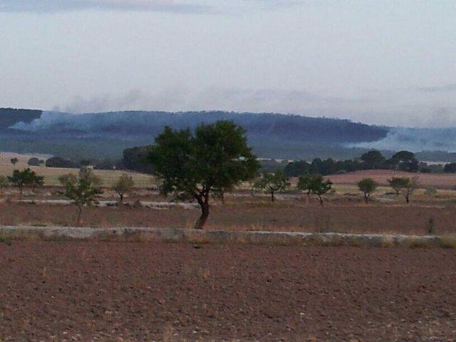 Imagen del incendio de Ayora