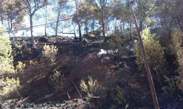 Zona afectada del incendio en la urbanización Selva Negra de Vallirana
