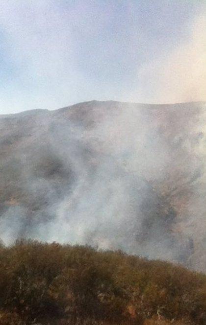Medios aéreos y terrestres trabajan para extinguir el fuego de Guadalajara