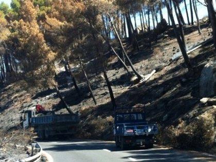 Los daños del fuego en la carretera entre Andratx y Estellencs costarán cerca de 600.000 euros