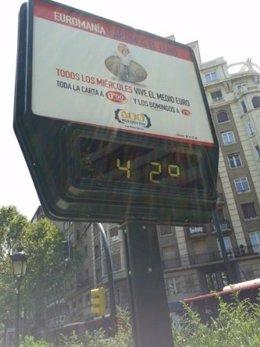 Los termómetros llegaron ayer a marcar 42 grados