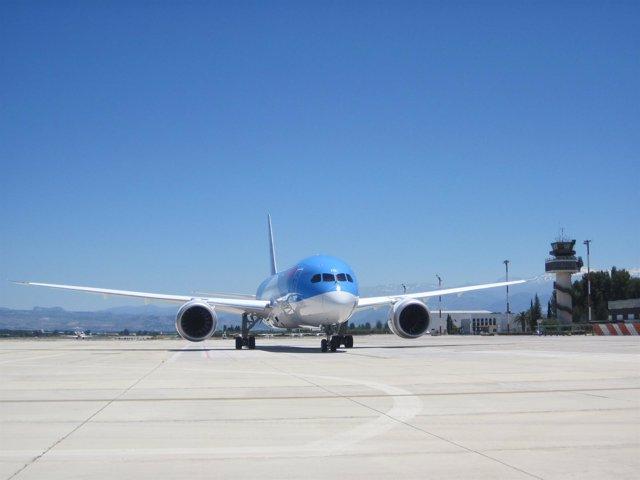 Aterrizaje de un Boeing 787 Dreamliner
