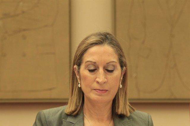 Pastor en la comisión por el accidente de Santiago