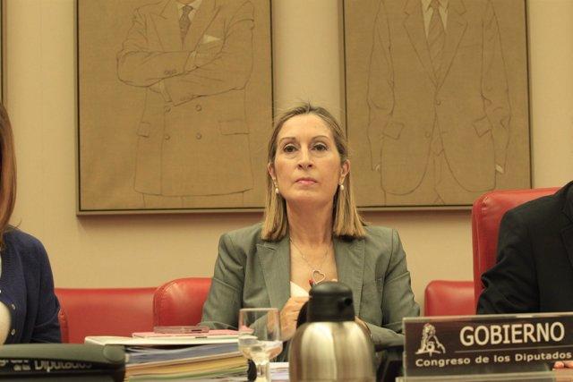 Ana Pastor en la comisión sobre el accidente de Santiago