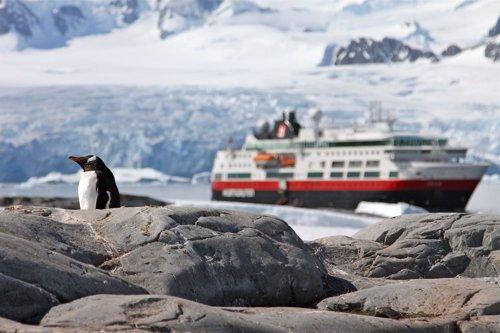 Pingüino y barco