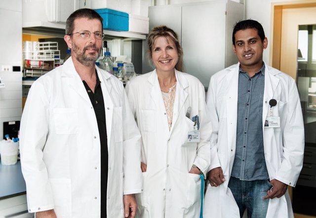 Investigadores de la Universidad de Berna
