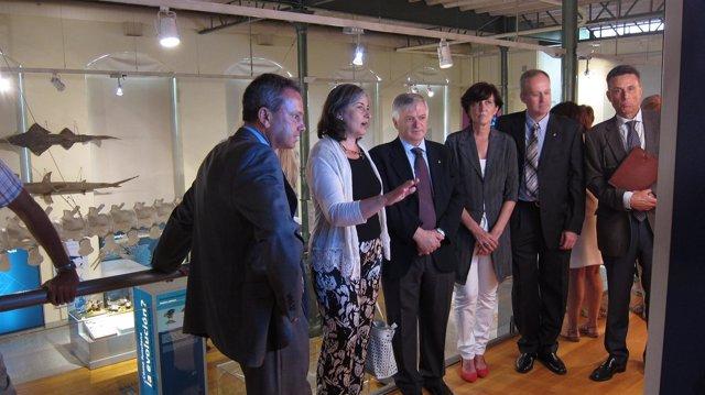 Imagen de los expertos observando la exposición
