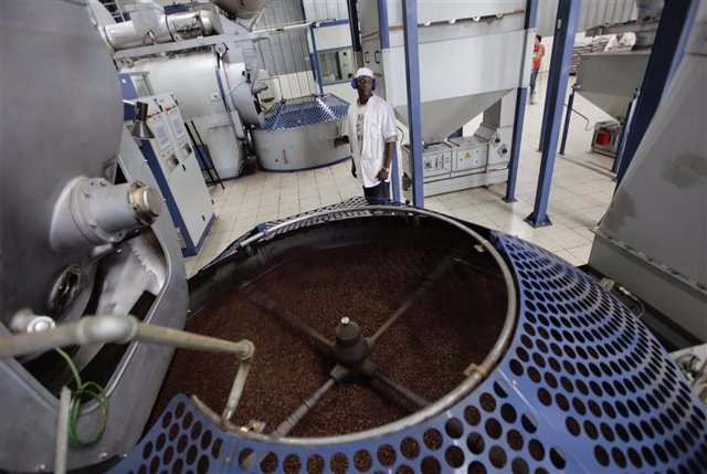 Imagen de archivo de un trabajador junto a un contenedor con granos de café tost