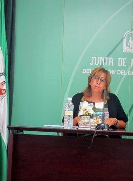 La delegada del Gobierno andaluz en Jaén, Purificación Gálvez.