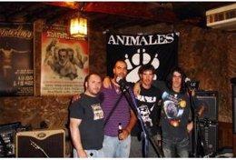 El grupo Animales actúa en Provocarte