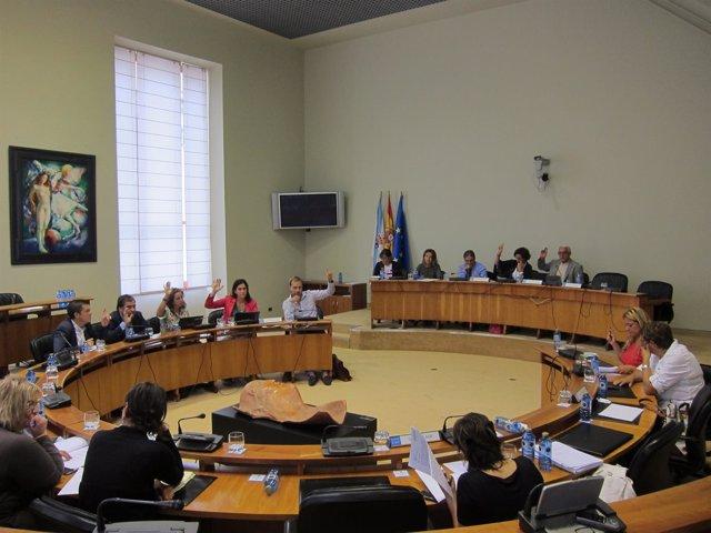 Comisión institucional en el Parlamento gallego
