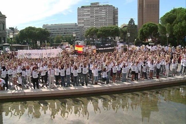 PROTESTA MADRID CONTRA TORO DE LA VEGA