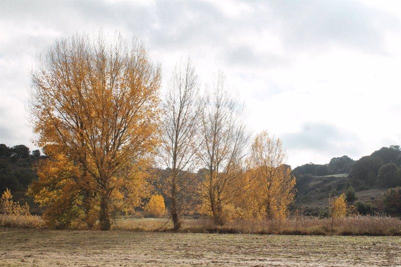 El otoño llegará a las 16.44 horas del domingo