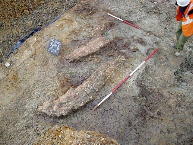 Elefante prehistórico